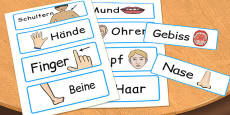 Parts of the Body Word Cards German