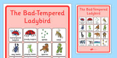 Vocabulary Poster to Support Teaching on The Bad Tempered Ladybird