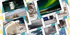 Arctic Display Photographs