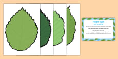 EYFS Leaf Munching Finger Gym Plan and Prompt Card Pack