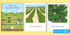 * NEW * Visit to a Strawberry Farm eBook
