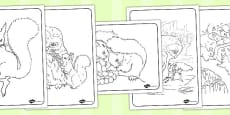 The Tale of Squirrel Nutkin Colouring Sheets (Beatrix Potter)