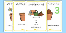 How to Grow a Plant Posters Urdu