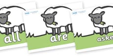 Tricky Words on Sheep to Support Teaching on Pig in the Pond