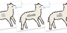 100 High Frequency Words on Lambs