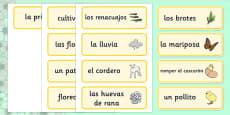 Tarjetas de vocabulario La primavera