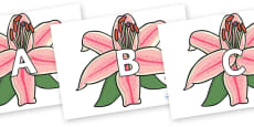 A-Z Alphabet on Lilies
