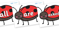 Tricky Words on Ladybirds