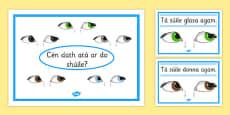 Eye Colour Posters Gaeilge