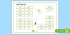 Seed Dispersal Word Mat