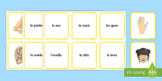 * NEW * Parts of the Body Snap Card Game French