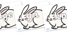 Silent Letters on Chinese New Year Rabbit