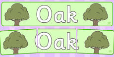 Oak Display Banner