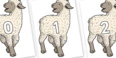 Numbers 0-100 on Lamb