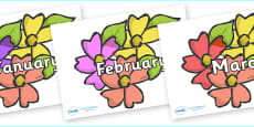 Months of the Year on Flowers