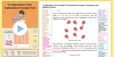 Y5 Information Texts: Explanation Model/Example Text