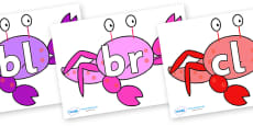 Initial Letter Blends on Crab to Support Teaching on Sharing a Shell
