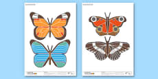 Enkl Butterfly Printable Pages