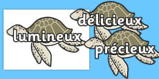 Wow Words on Turtles French
