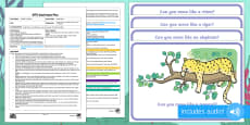 * NEW * EYFS Jungle Disco Adult Input Plan and Resource Pack