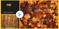 What Can You See? Autumn PowerPoint Game English/Romanian