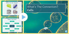 Cells What's the Connection? PowerPoint