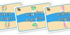 Editable Class Group Table Signs (Small Sea Life)