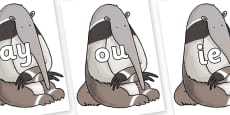 Phase 5 Phonemes on Anteater to Support Teaching on The Great Pet Sale