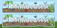 Minibeasts Display Banner (Detailed Version)