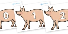 Numbers 0-31 on Pig to Support Teaching on Pig in the Pond