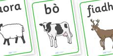 Scottish Gaelic Animal Display Posters