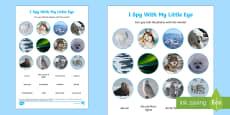 Polar Regions Themed I Spy Photo Activity Sheet -