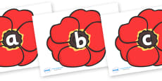 Phase 2 Phonemes on Poppies