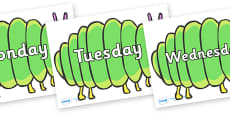 Days of the Week on Fat Caterpillars to Support Teaching on The Very Hungry Caterpillar