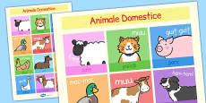 Animalele domestice - Planșă cu imagini si cuvinte