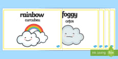 * NEW * Weather Words Display Posters English/Romanian