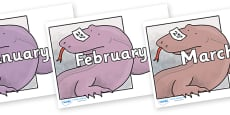 Months of the Year on Komodo Dragon to Support Teaching on The Great Pet Sale