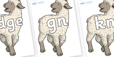 Silent Letters on Lamb