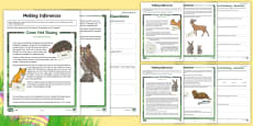 LKS2 Easter Tale Inference Differentiated Go Respond Activity Sheets