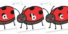 Phase 2 Phonemes on Ladybirds