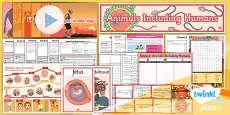 PlanIt - Science Year 5 - Animals Including Humans Unit Pack