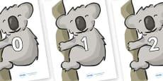 Numbers 0-50 on Koalas