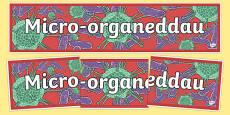 Baner Micro-organebau