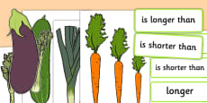 Vegetable Size Comparison Measuring Activity