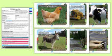 Farm Animal 'Describe It and Find It' EYFS Adult Input Plan And Resource Pack