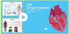Corpul omenesc - PowerPoint Informativ pentru CAF