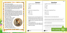 KS1 Foxes Differentiated Reading Comprehension Activity
