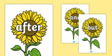 Connectives on Sunflowers