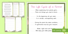 Life Cycle of a Plant Handwriting Poem