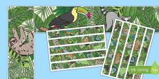 Rainforest Themed Display Borders